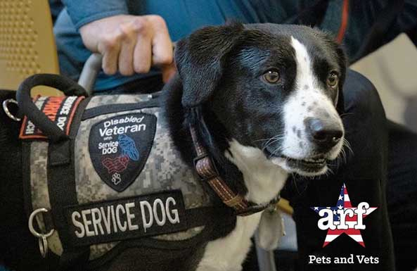 Person with Disabled Veteran Service Dog - ARF Pets and Vets