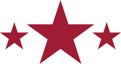 Nashville Stars Historical Icon